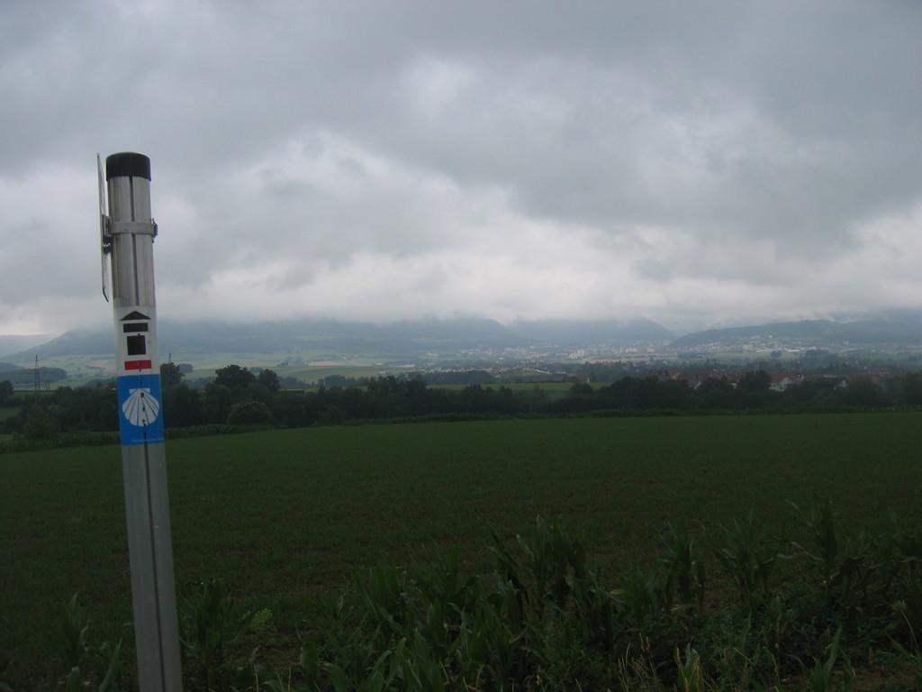 Jakobsweg und Limeswanderweg bei Heuchlingen (Braunhof, Gollenhof) bei Regen