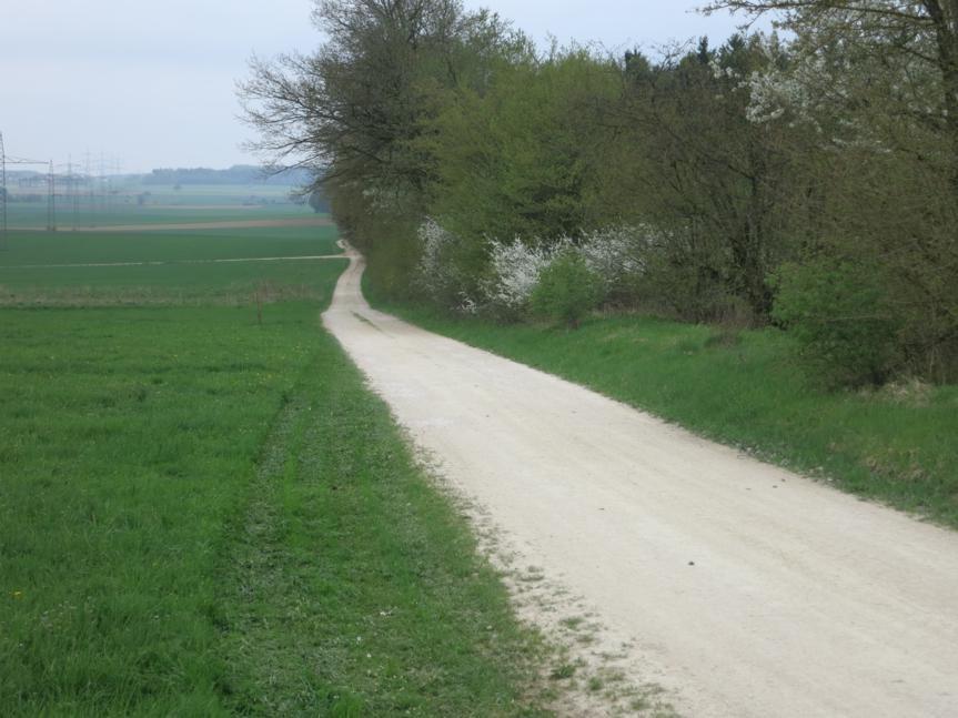 Limeswanderweg bei Raitenbuch