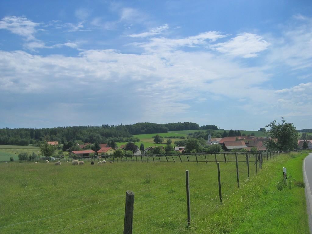 Wenschdorf
