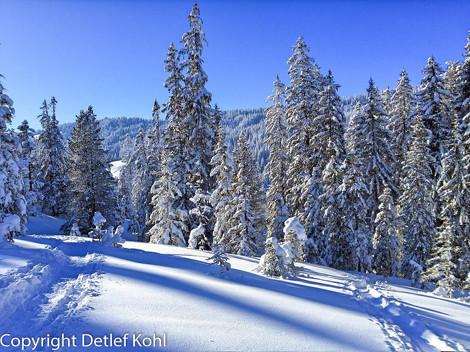 Fotografische Impressionen ‒ Tief verschneite Winterlandschaft am Glaubenberg