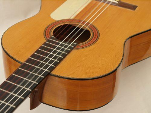 Santos Hernandez 1937 - Guitar 2 - Photo 1