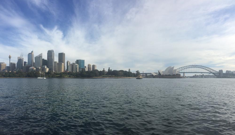 Der Blick auf das Opernhaus und die Harbour Bridge vom botanischen Garten aus.