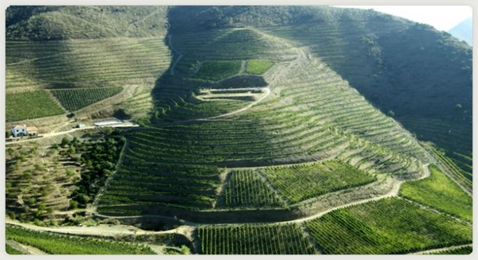 Quinta do Cerval