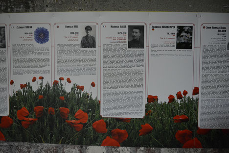 """Albert- du 1er février au 18 décembre - Musée Somme 1916- nouvelle animation au musée """"Destin de Soldat"""""""