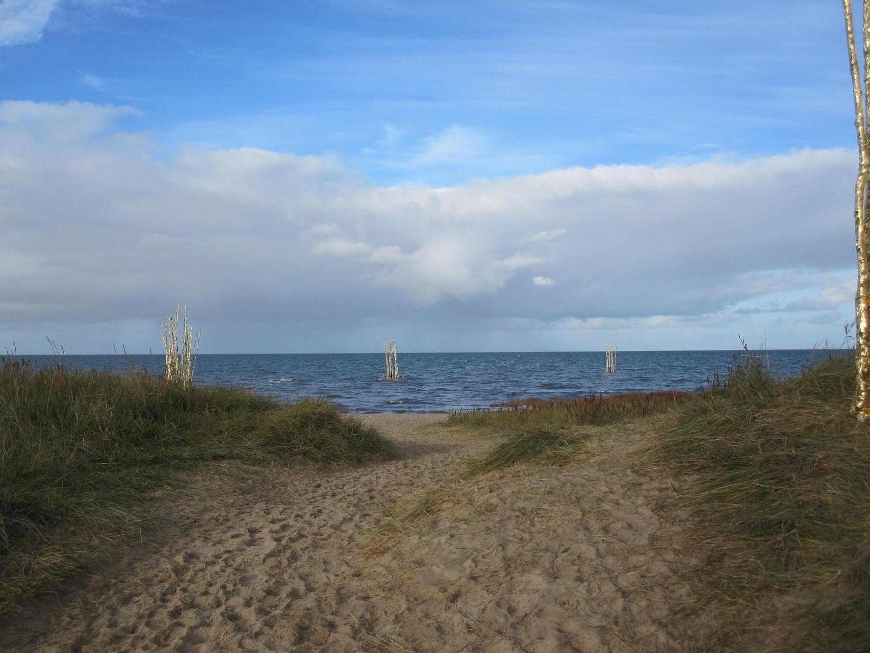 ...und dann zum Strand.