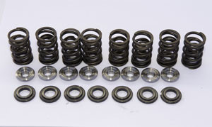 Custom Hi-Lift Spring Kit (Yam Roadstar 1600) (# 3045) 270 US Dollar