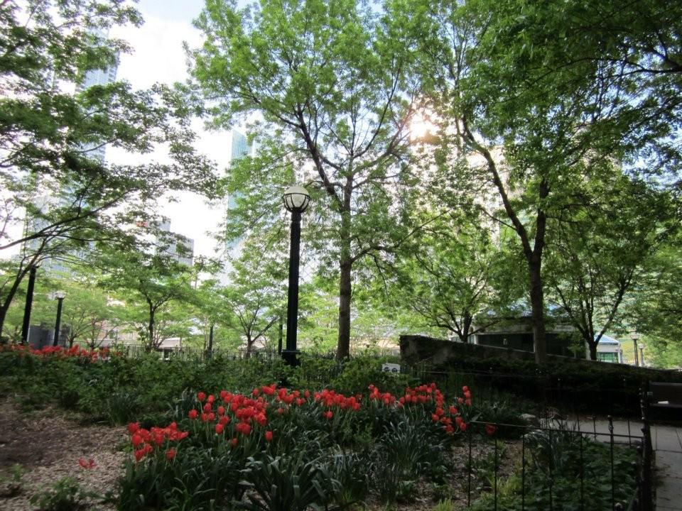 Toronto Garden