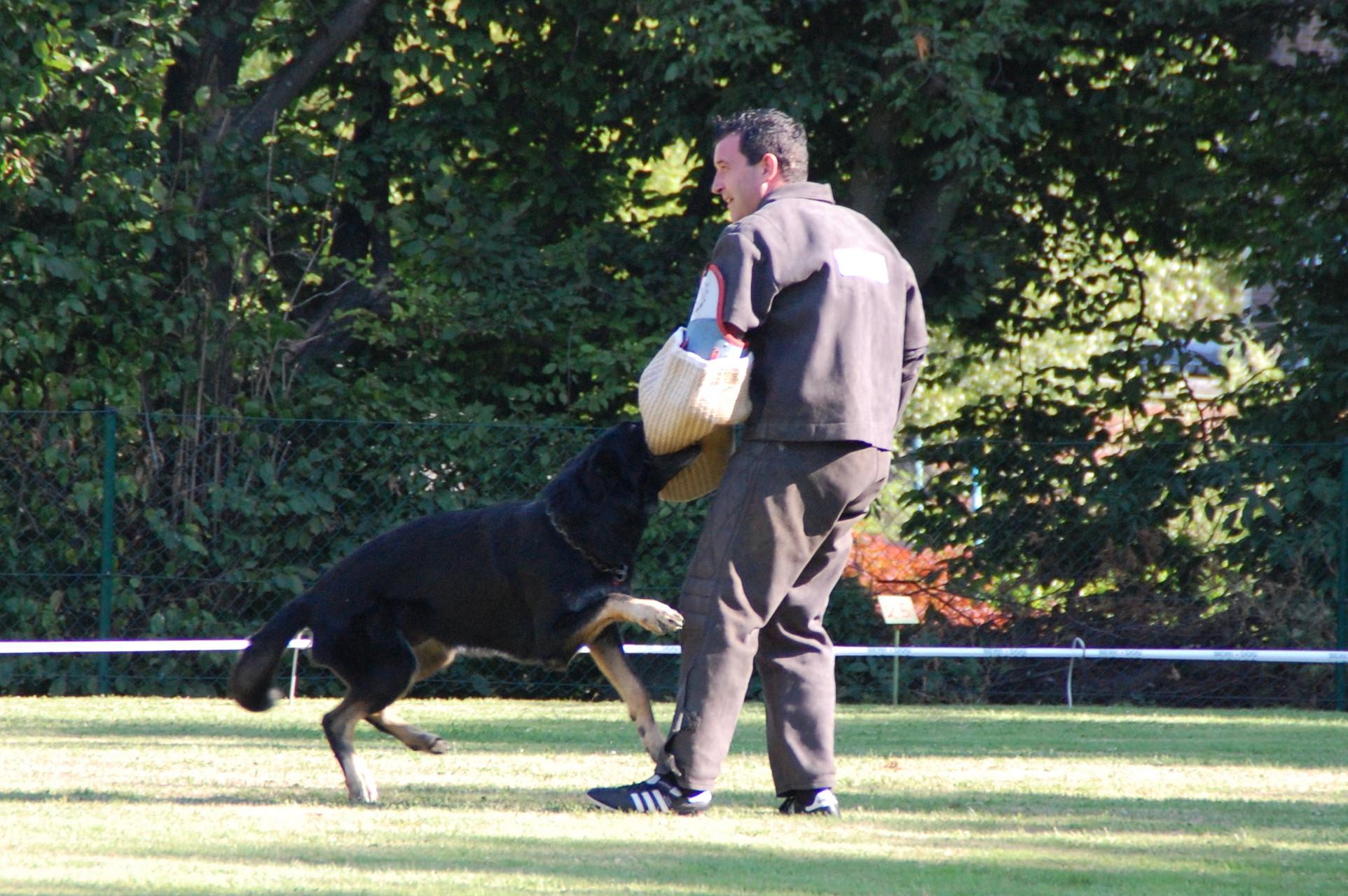 Ein Hund stellt Patrick Leisten in der langen Flucht