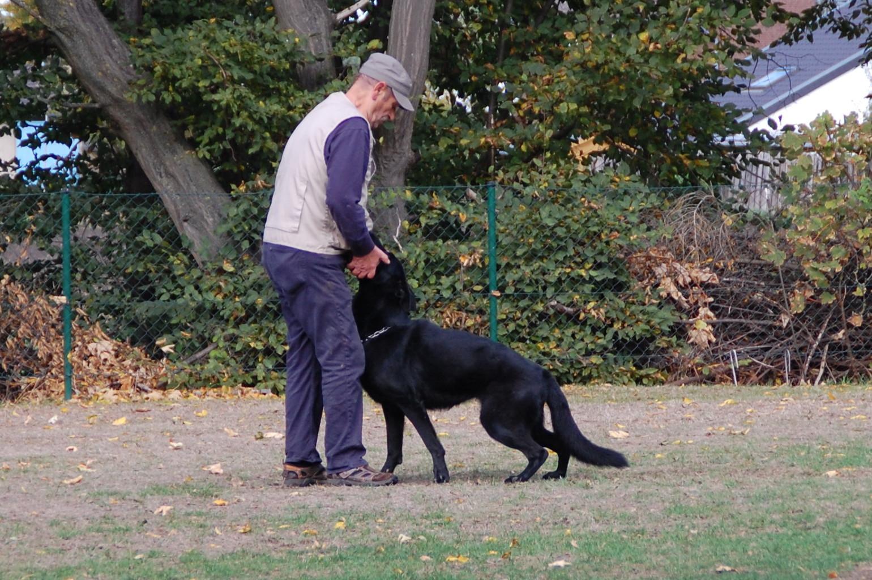 Peter van Thriel erhält von Fenja aber das Apportierholz nicht zurück