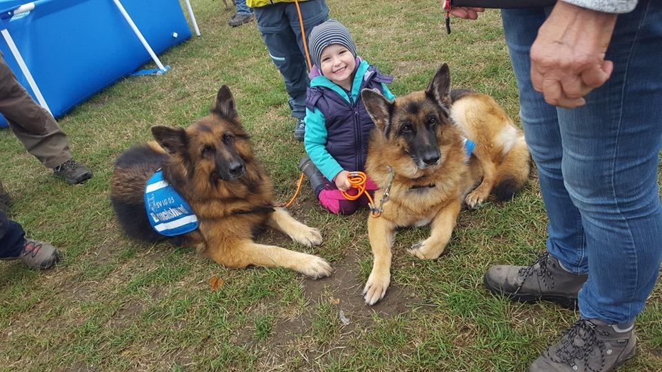 Der beiden Schwestern als Familienhunde