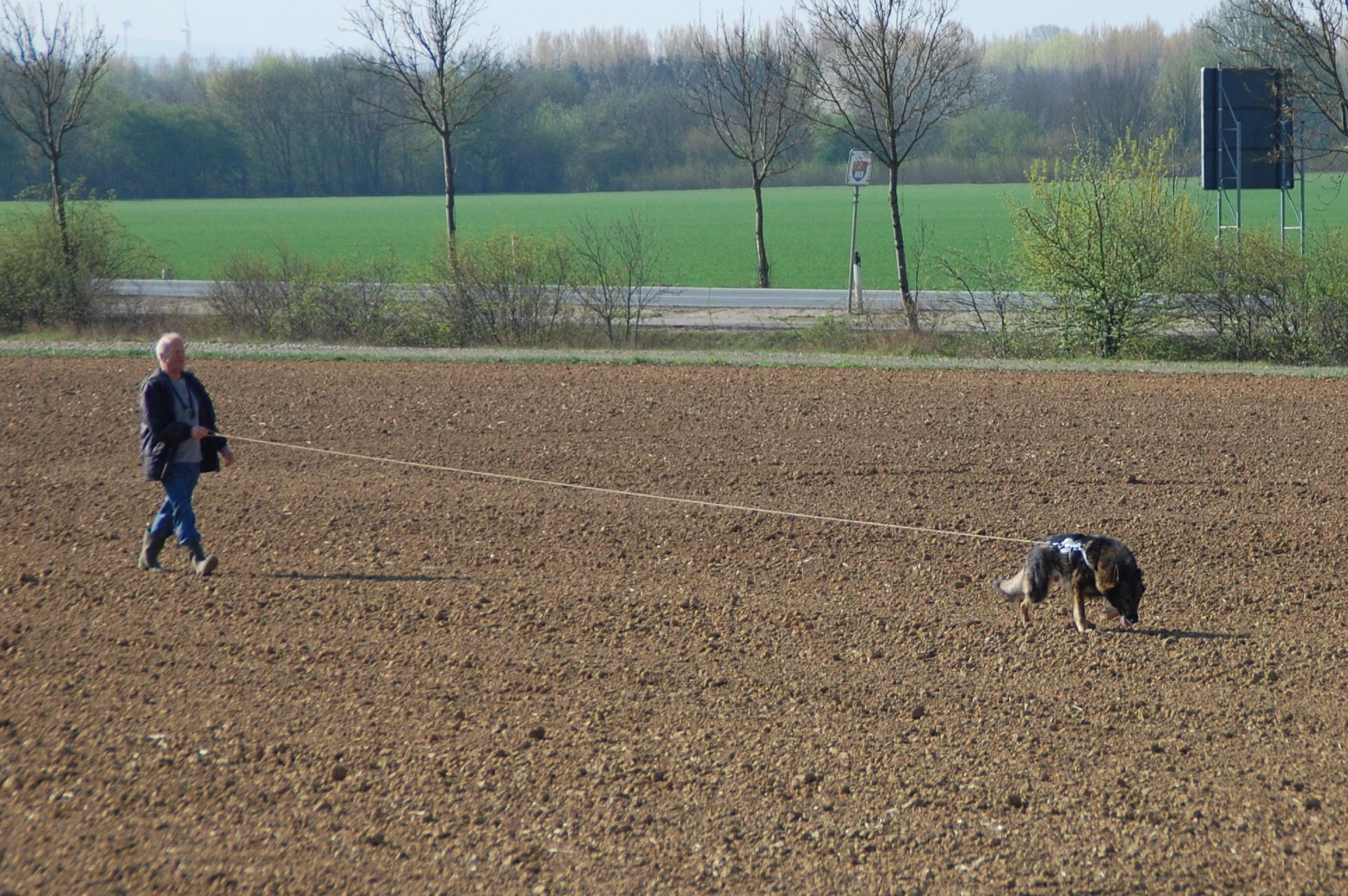 Reiner Müller und sein Dingo auf der Fährte