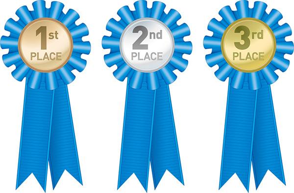 青いリボン飾りの入賞メダル Meritorious Service Medal