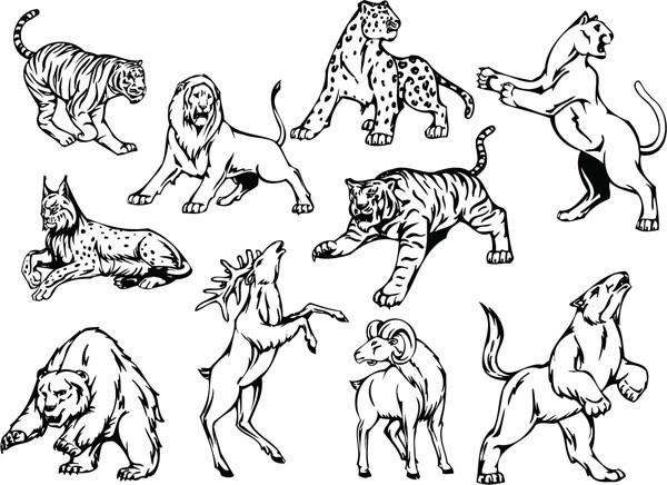 猛獣の線画 line art animal pattern