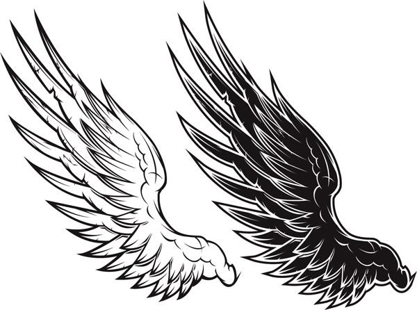 白と黒で表現した大きな翼 black and white vector wings