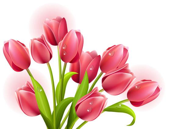 美しい花のクリップアート beautiful flower vector1