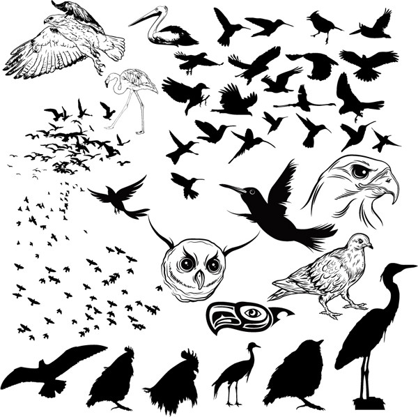 鳥のシルエット Vector Birds Silhouettes
