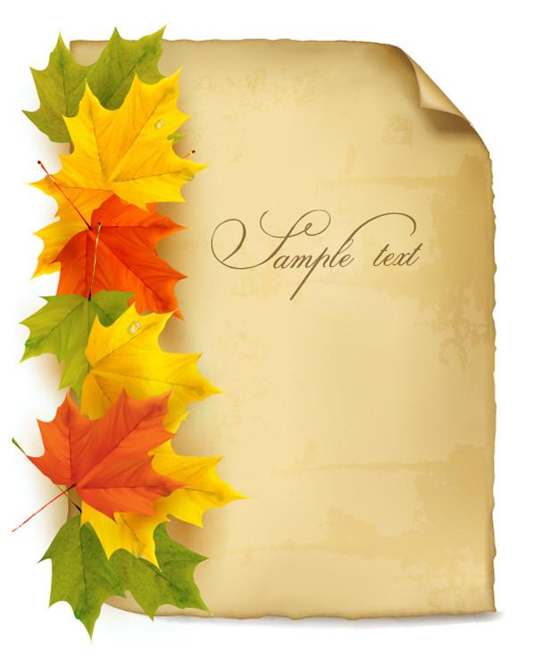 美しい紅葉が重なる背景 beautiful maple leaf background