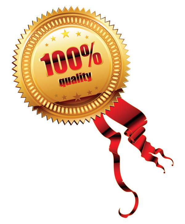豪華な金メダルのデザイン見本 gold ribbon medal vector2