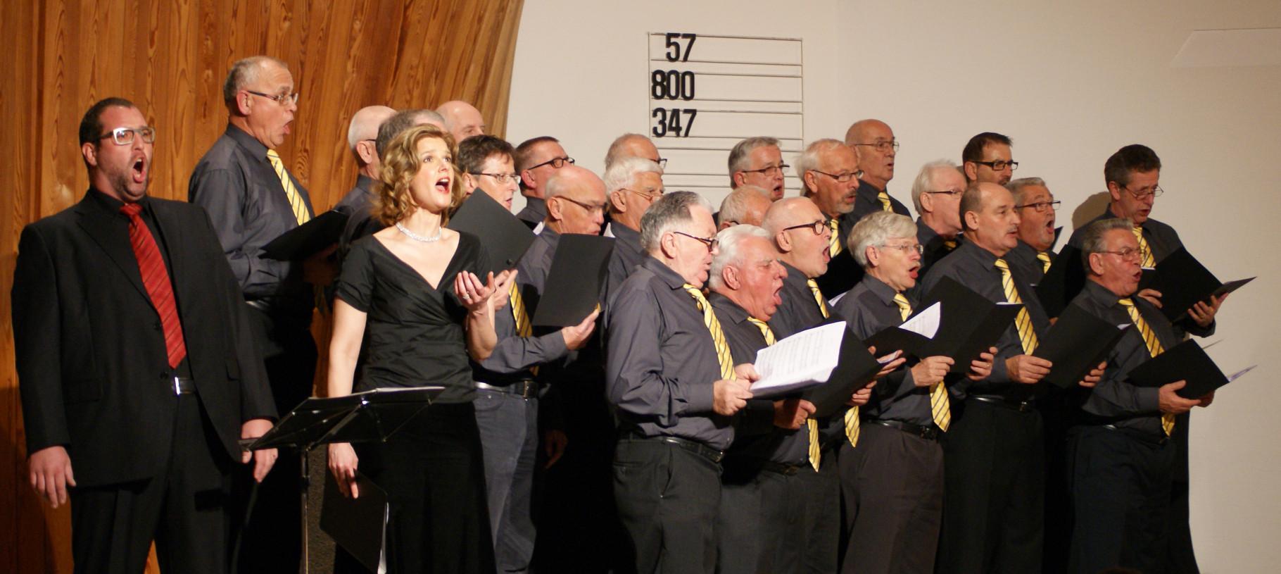 Verdi-Gala in Engstringen, November 2013
