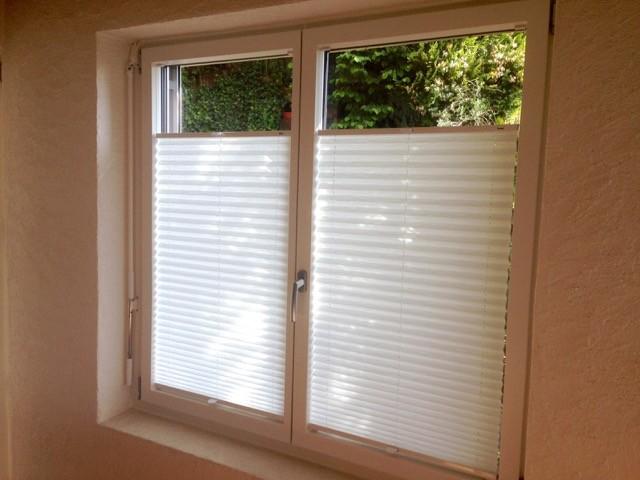 Fenster weiss mit passenden Plisse