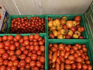 div.Tomaten