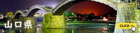 錦帯橋(きんたいきょう:岩国市)