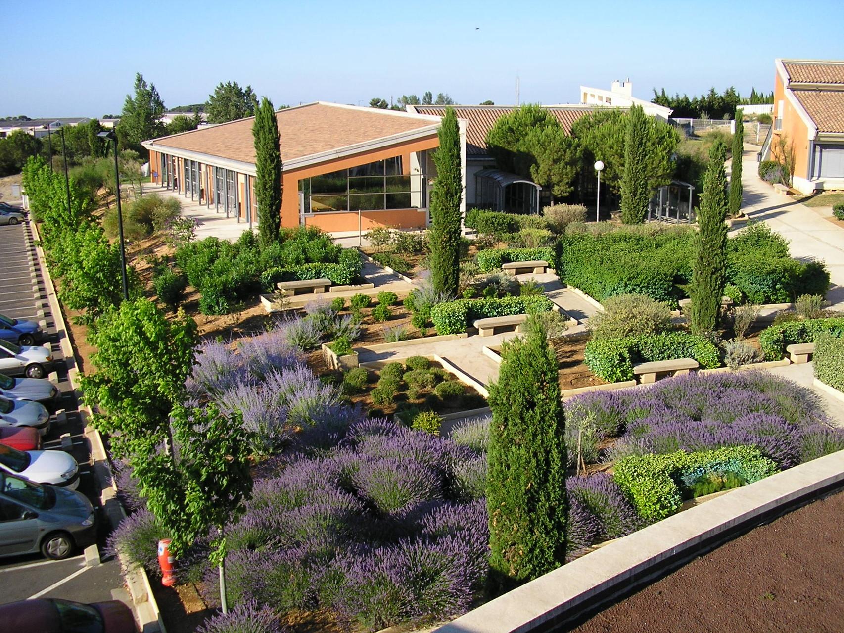 Le jardin des senteurs (thym, lavande, romarin ...) tout près de la cafétéria