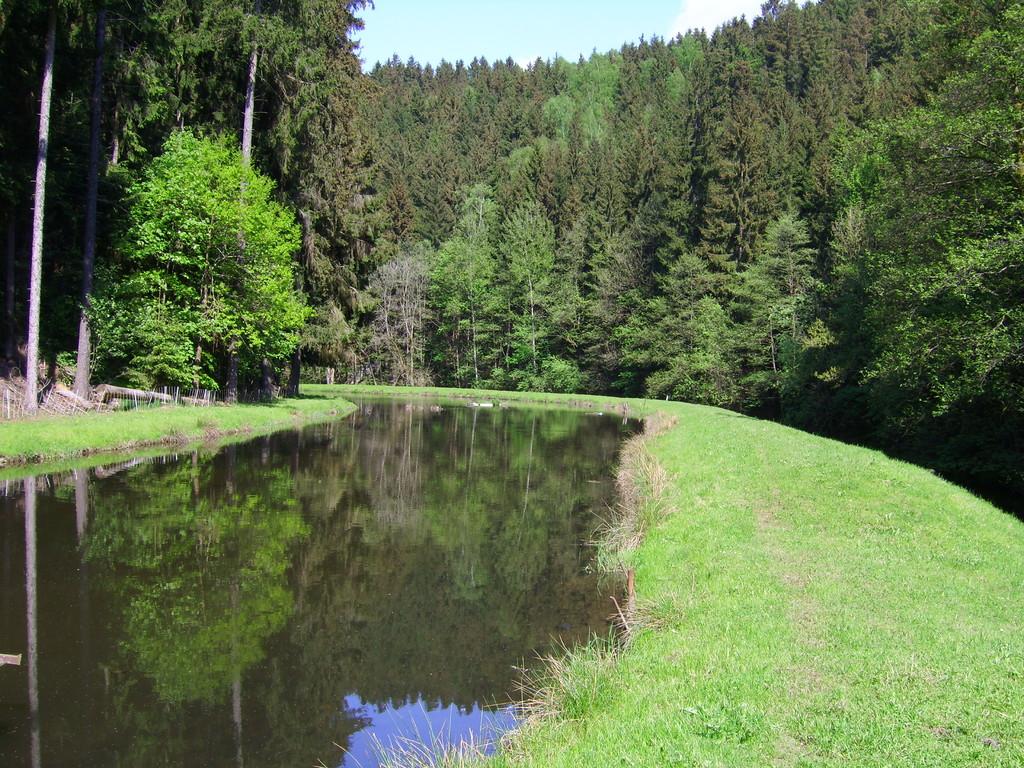 Unser See läd ein für einen Spaziergang um den See