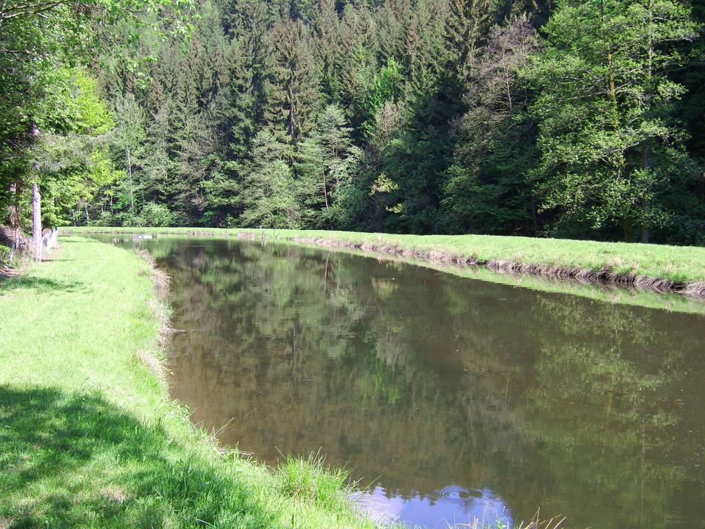 Flussaufwärts über die Fusgängerbrücke ca. 5 Gehminuten am Stausee angekommen
