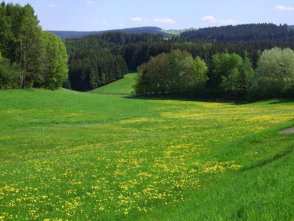 Blick ins Ölschnitztal am Horizont links der Schneeberg - rechts der Ochsenkopf
