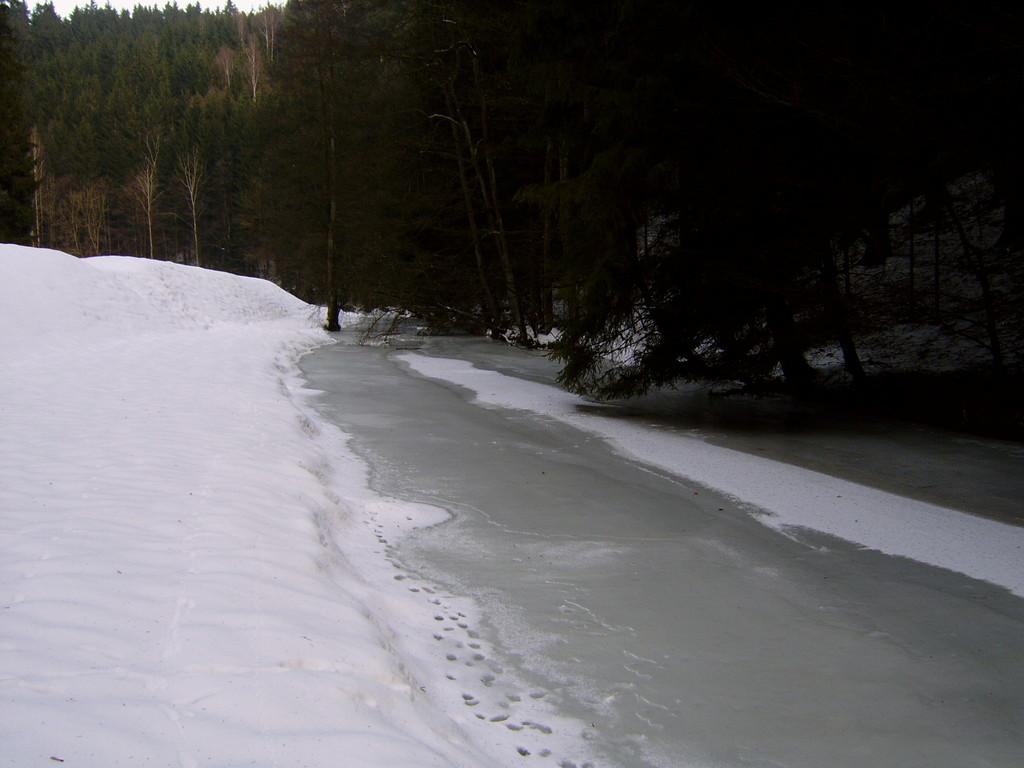 Die Ölschnitz mit Blick Fluss-aufwärts