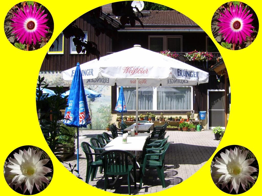 Terrasse - Biergarten mir Kakteensammlung