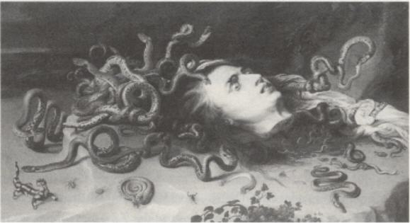 Das Haupt der Medusa.