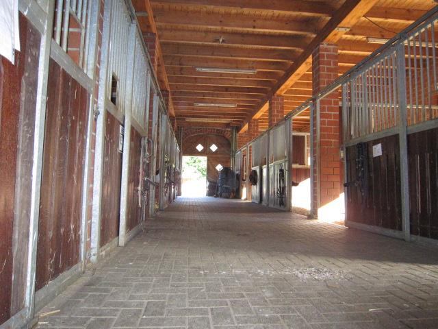Stallgasse Stall 1