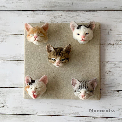 【子猫顔5匹】2019.7 【こにゃんこ玉】の子猫の顔5匹 一匹一匹の個性が感じられる表情を目指しています。
