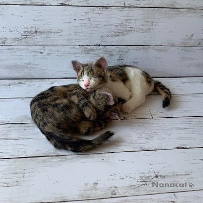 【仔猫2匹」2019.7 【こにゃんこ玉】の二匹