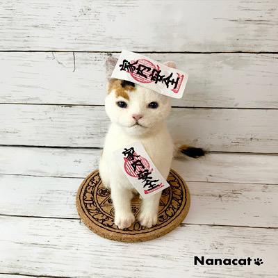 【にゃんかちがう お札】2019.7 魔法陣の上の三毛猫仔猫にはなぜかお札が・・・にゃんか違うんです。