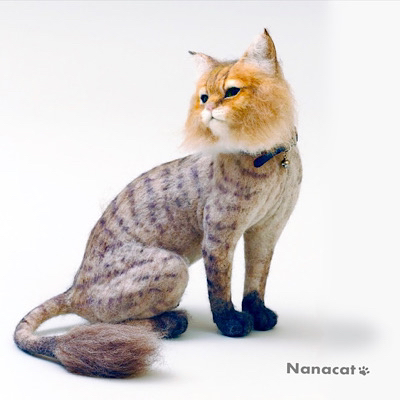 【サマーカットのチンチラゴールデン ちゃちゃ】私が羊毛フェルトを始めるきっかけになったチンチラゴールデンの「ちゃちゃ」がモデル。