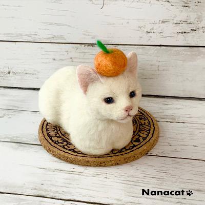 【にゃんかちがう みかん】2019.7 魔法陣の上の白猫の子猫の頭の上にはみかん、にゃんか違うんです。