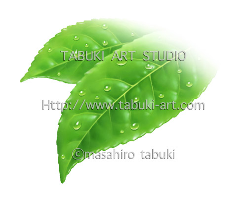 RD2092茶葉