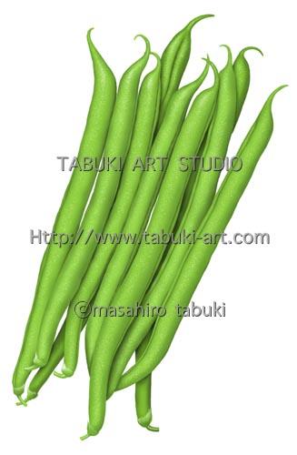 いんげん 豆 イラスト