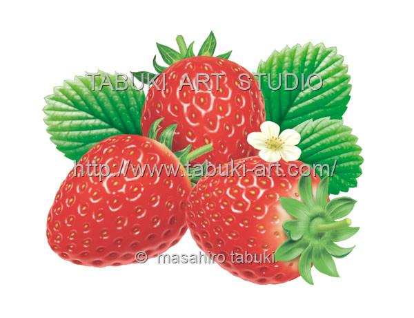素材イラスト イチゴ いちご 花 苺 ストロベリー 商用利用 ストックイラスト