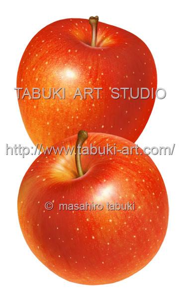 リンゴ丸2 RD10630