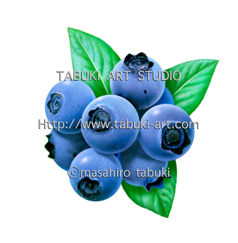 RD1328 ブルーベリー リアルイラスト 果物