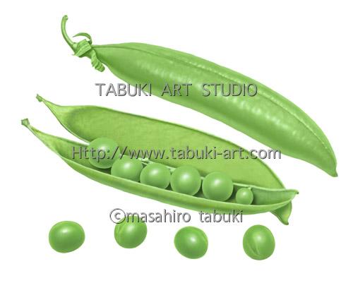 RD_3102 グリーンピース エンドウ豆 豆イラスト 野菜