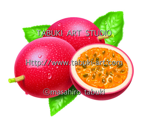 NRD1243 パッションフルーツ リアルイラスト 断面 シズル おいしい果物  フルーツイラスト fruit illustration