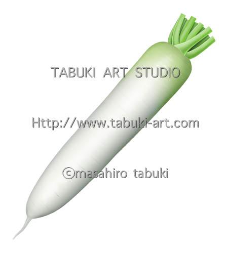 大根 野菜 イラスト