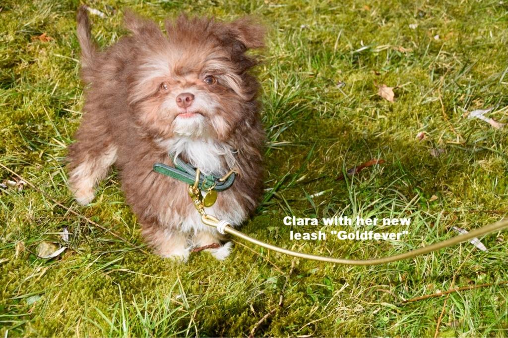 Clara from Germany