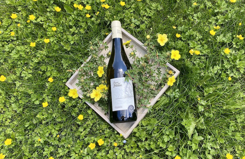 Wein des Monats: Lugana