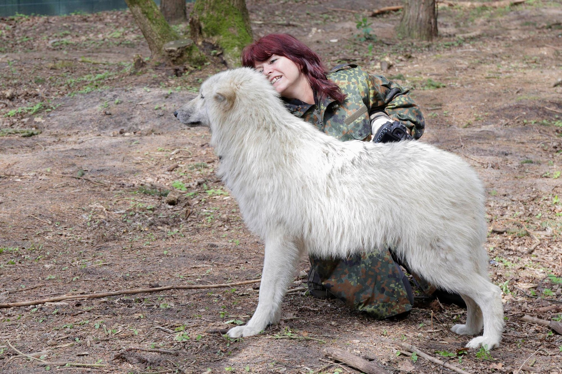 Kommunikation mit dem Wolf (Foto: Dagmar Growe-Lodzig)